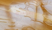 Sàn gỗ có chống thấm nước không???